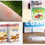 Les piqûres de moustiques qui démangent aideront à éliminer le sel et le soda au vinaigre