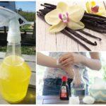 Utiliser la vanille des moustiques