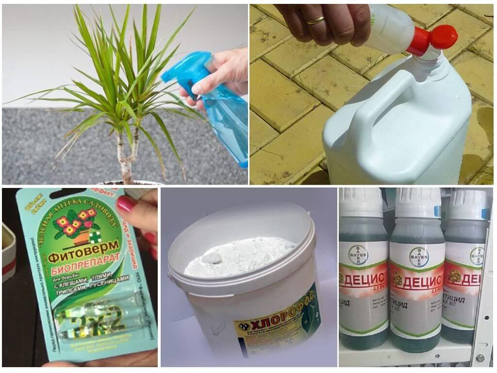 Produits chimiques antiparasitaires