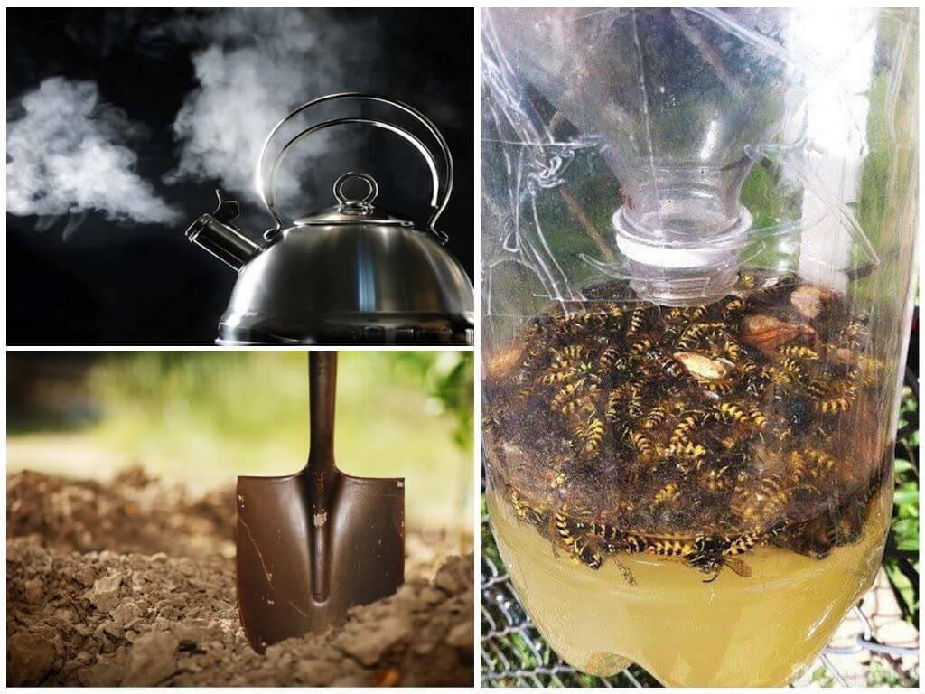 Moyens de combattre les abeilles de la terre
