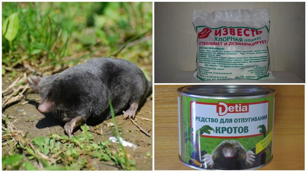 Mole Chemicals