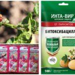 Produits chimiques pour la destruction du doryphore de la pomme de terre