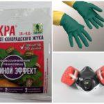 Précautions à prendre lors de travaux avec des produits chimiques toxiques