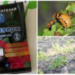 Application de phyto-ferme de coléoptères du Colorado