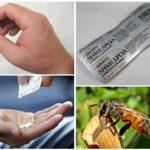 Traitement de l'allergie par morsure