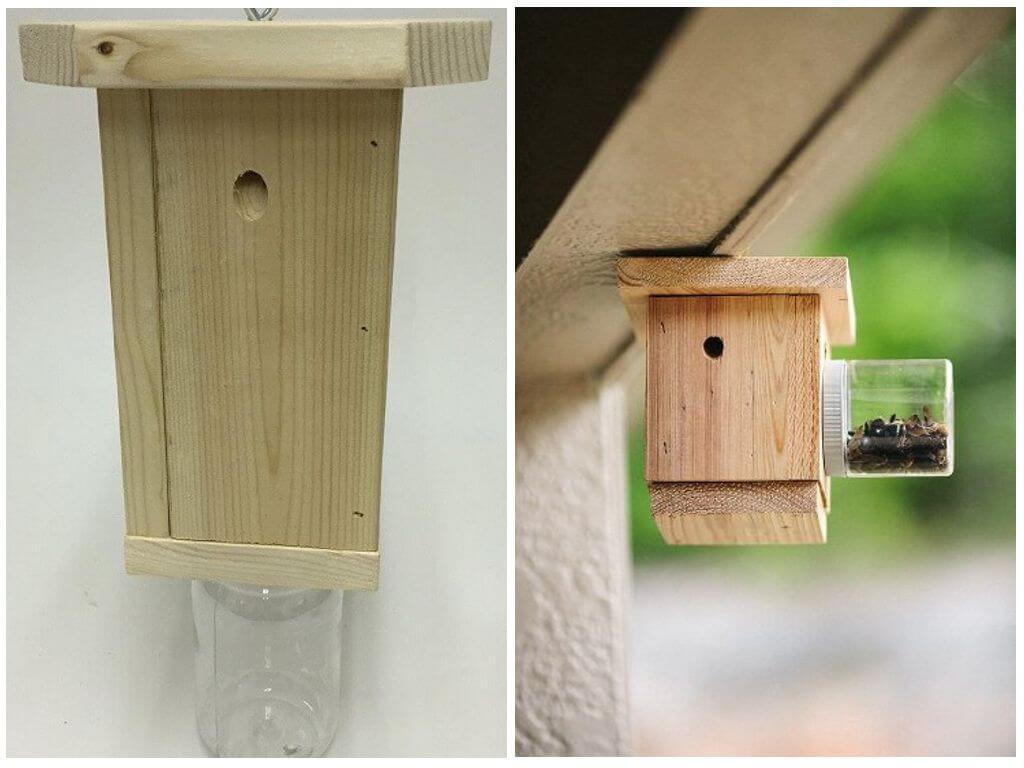 Pièges à abeilles charpentiers
