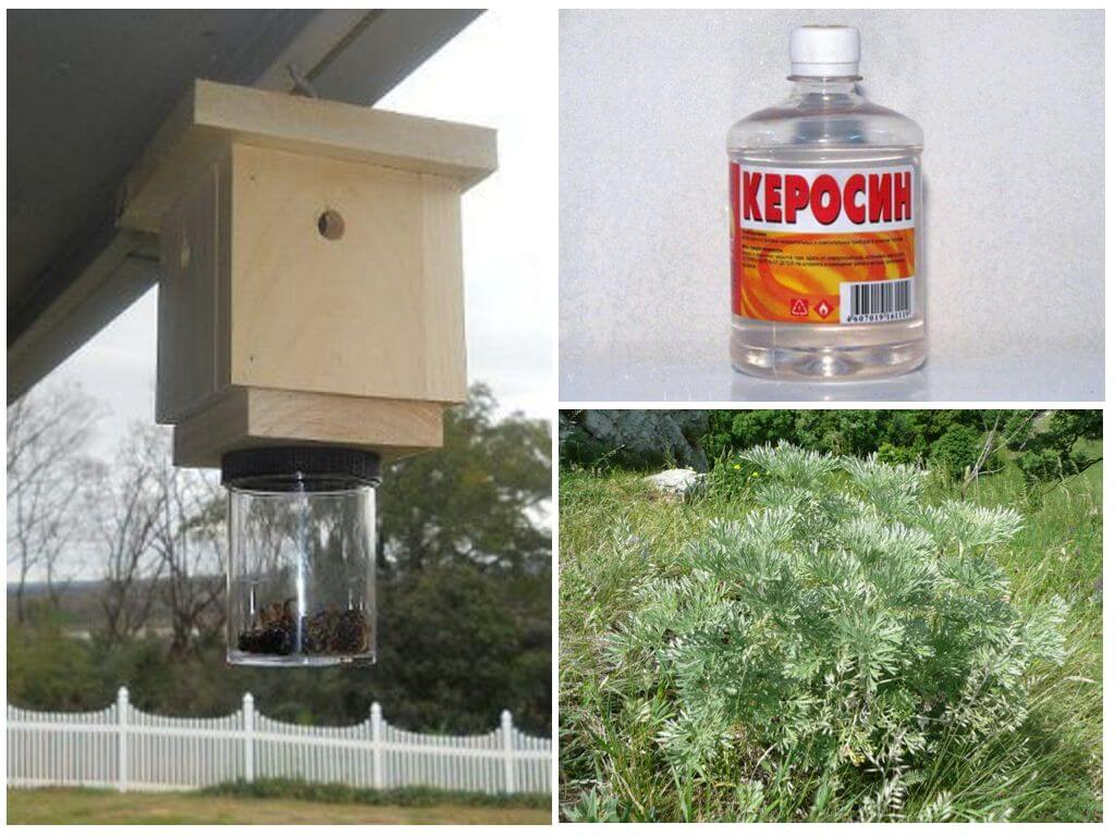 Méthodes de traitement des abeilles sauvages
