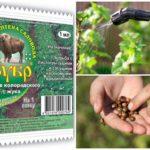 Poison Bison du doryphore de la pomme de terre