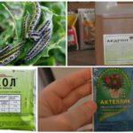 Produits chimiques pour le combat des chenilles