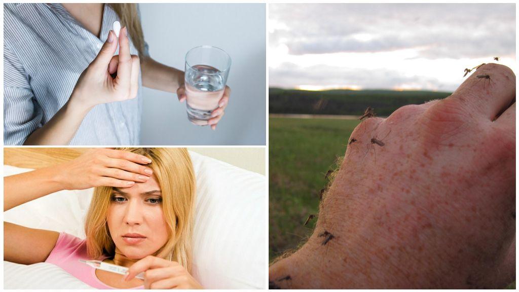 Médicament à la température des piqûres de moustiques