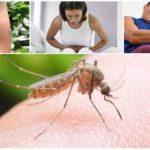 Conséquences de la morsure de moustique du paludisme