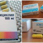 Doxycycline pour le traitement de la morsure de la tique