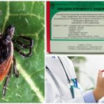 Vaccination contre l'encéphalite à tiques