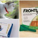 Produits de protection contre les tiques