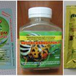 Produits biologiques pour lutter contre les acariens