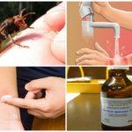 Actions après une piqûre d'insecte