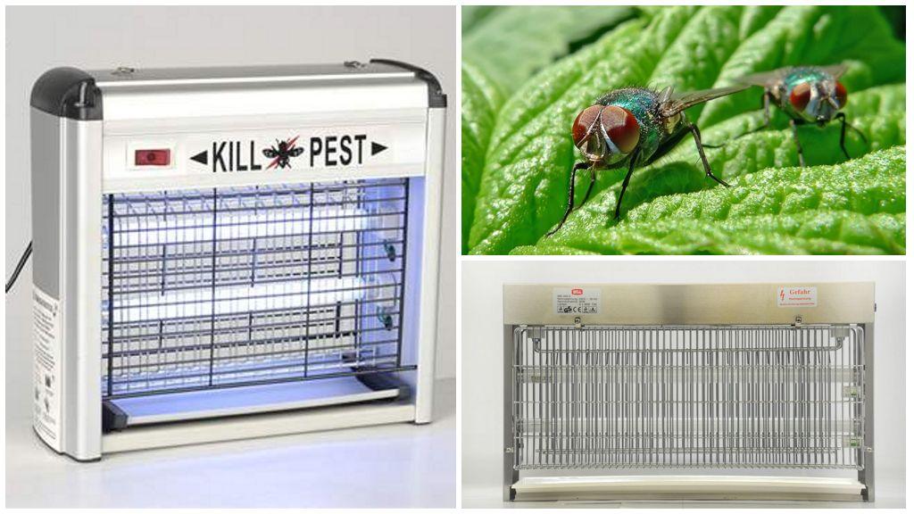 Tue-insectes électriques