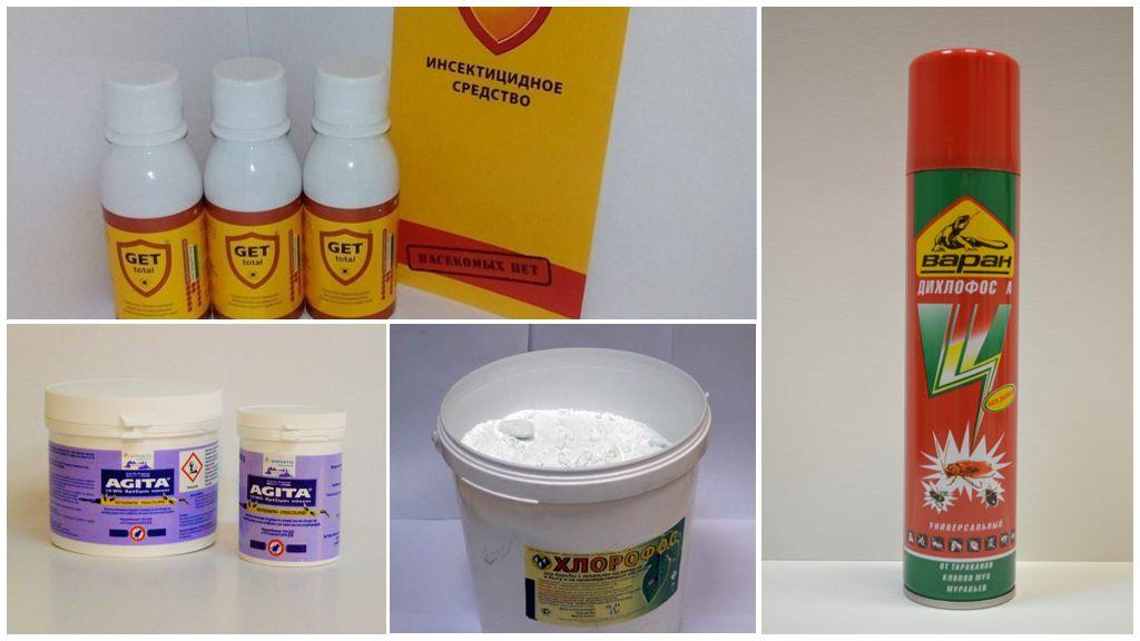 Insecticides pour la lutte antiparasitaire