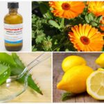 Remèdes populaires contre les morsures de guêpes