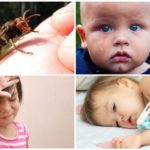 Allergies systémiques après une piqûre de guêpe