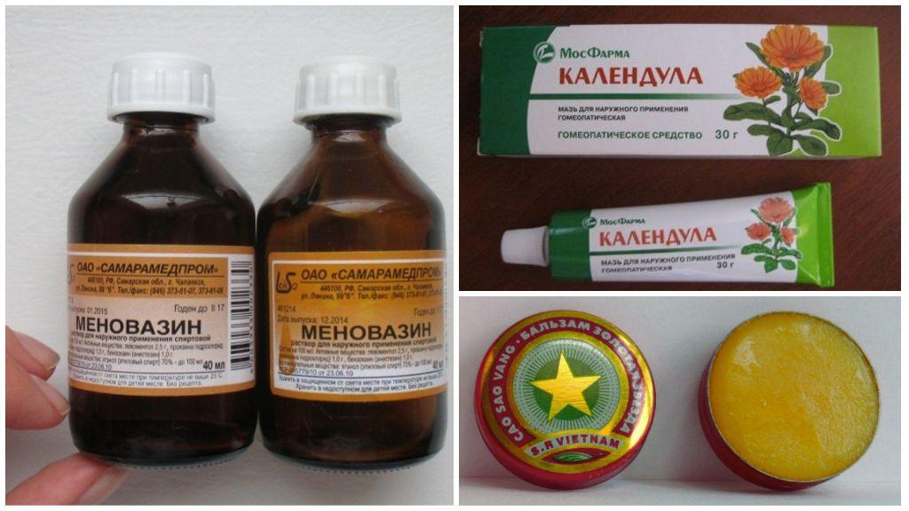Remèdes contre les piqûres de guêpes