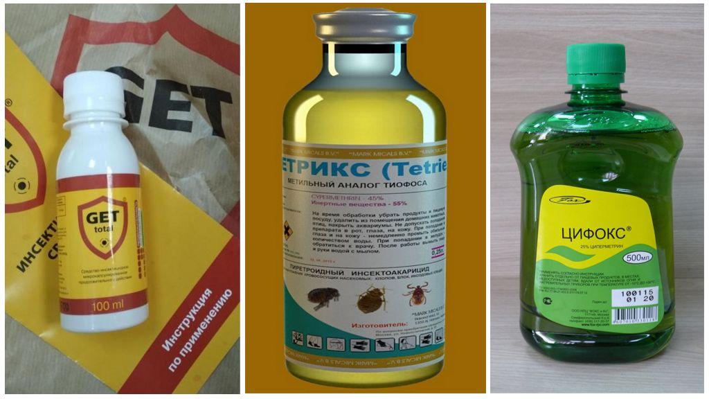Remèdes professionnels pour les guêpes
