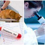Tests de giardiase