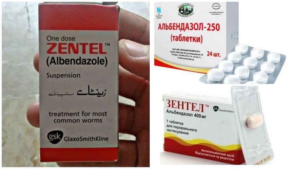 Benzimidazoles contre Giardia