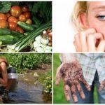 Causes de l'infection parasitaire