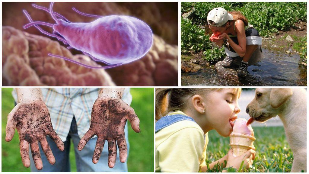 Causes de l'infection à Giardia