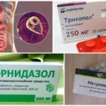 Remèdes anti-Giardia au nitroimidazole